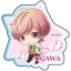 Star-mu - Acrylic Badge 19Pack BOX(Pre-order) thumbnail 11