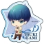 Star-mu - Acrylic Badge 19Pack BOX(Pre-order) thumbnail 4