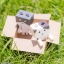 Nyanboard figure collection 10Pack BOX(Pre-order) thumbnail 8