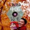 爱情篇汉语视听说系列教材中级(上):中国微镜头China Focus - Intermediate Level 1 : Love