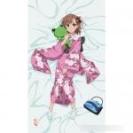 Toaru Kagaku no Railgun S - New Illustration Sheet: Mikoto(Pre-order)