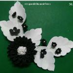 มุมดาเลียโฟม ดอกดำใบขาว