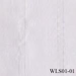 WLS01