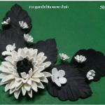 มุมดาเลีย ดอกขาวใบดำ