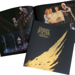 Harry Potter And The Cursed Child Official Souvenir Brochure