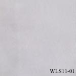 WLS11