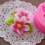 พิมพ์ฟองดอง พิมพ์วุ้น 3D ลายดอกดอกแก้ว thumbnail 2
