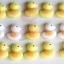 แม่พิมพ์ซิลิโคน พิมพ์วุ้น สำหรับทำขนม ลายเป็ด Ducky 15 ช่อง thumbnail 6