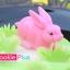 พิมพ์ฟองดองลายกระต่าย thumbnail 4
