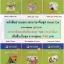 ชุดหนังสิออ่านนอกเวลาภาษาจีนเรื่อง Smart Cat ระดับ 1 thumbnail 1