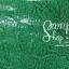 เชือกร่ม สีเขียวดิ้นเงิน thumbnail 1
