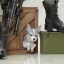 Metal Gear Solid BISHOUJO - Sniper Wolf 1/7 Complete Figure(Pre-order) thumbnail 10