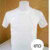 เสื้อยืดคอกลม TK สีขาว ไซส์ M ทรงตรง