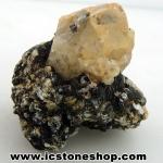 หินนิ้วแม่มด Witches Fingers (60g)