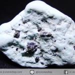 เทอร์ควอยส์-ไพไรต์ (Campitos Turquoise with Pyrite) Mexico (2.9g)