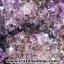 ▽โพรงอเมทิสต์ ซุปเปอร์เซเว่น (Geode Amethyst Super seven 7)39.8 KG thumbnail 3