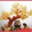▽ต้นไม้มงคลซิทริน Citrine ชุดเงินทองไหลมาเทไม thumbnail 4
