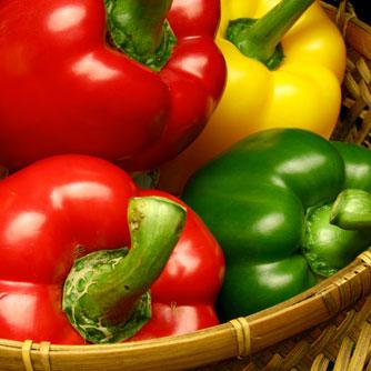พริกยักษ์ พริกหวาน sweet pepper