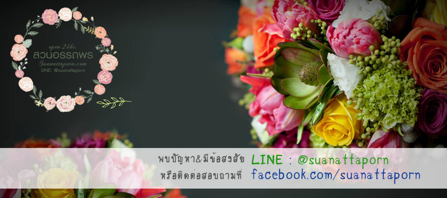 สวนอรรถพร จำหน่ายเมล็ดพันธุ์ดอกไม้ ทั้งไทยและต่างประเทศ