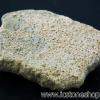 เปลือกไข่ไดโนเสาร์ Saltaurus (6.3g)