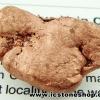 ทองแดงธรรมชาติจากมิซิแกน ขัดมัน(19g)