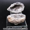 อ๊อคโค่ จีโอด (Occo Geode)- (141g)