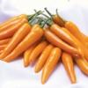 พริกเหลือง พันธ์น้ำส้ม / 100 เมล็ด