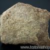เปลือกไข่ไดโนเสาร์ Saltaurus (10.5g)