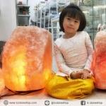 [โปรโมชั่น]โคมไฟหินเกลือภูเขาหิมาลัย ทรงธรรมชาติ (65.3Kg)
